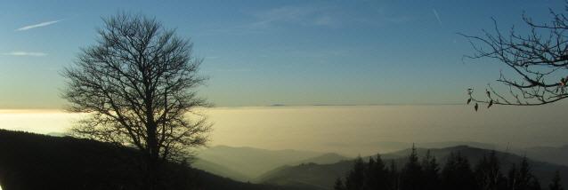 Blick von Schauinsland Bergstation nach Westen bis zu den Vogesen am 15.11.2012