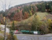 weihnachtsbaum-steinwasen151103