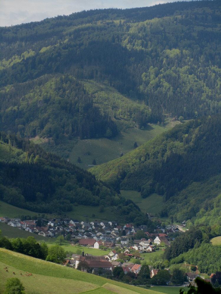 weilersbach10oberried130528