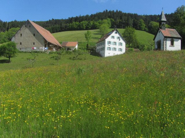 weilersbach1fresslehof130528