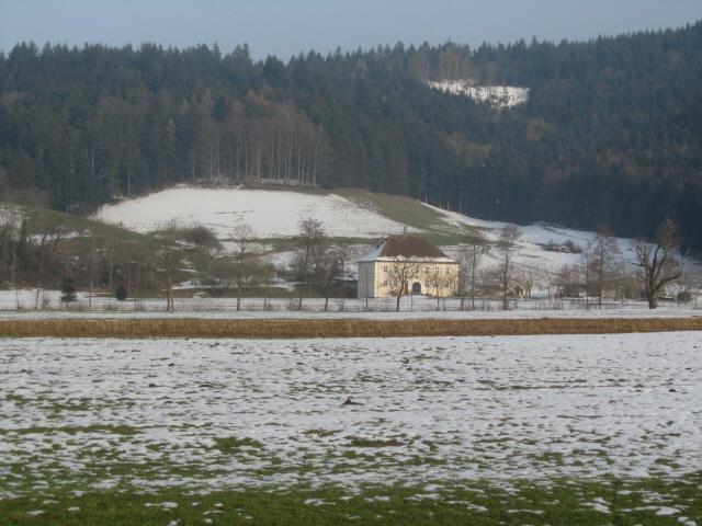 birkenreute-wiese130301