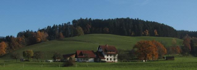 Blick nach Osten in Burg-Höfen zwischen Kirchzarten und Himmelreich am 15.11.2012 - Thomashof, Herbstfarben