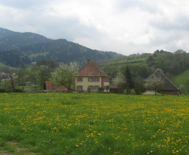 dietenbach-kuechlehof130507