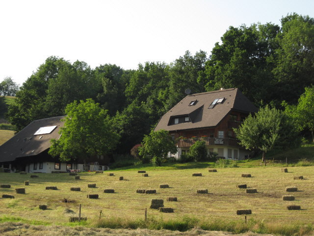 dietenbach1grasballen130620