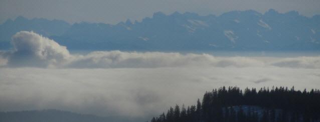 Tele-Blick vom Feldberg-Seebuck nach Süden über den Nebel von Hochrhein und AKW (links) zu den Alpen am 7.1.2013
