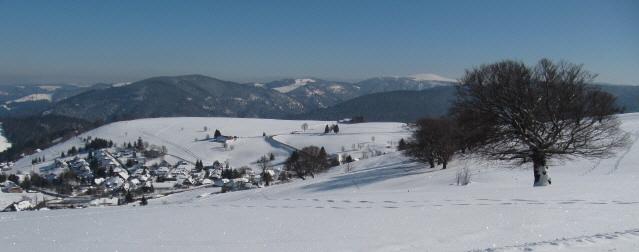 Blick nach Osten über die Loipe und Hofsgrund bis zum Feldberg am 20.2.2013