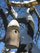 schnee-nistkasten150101