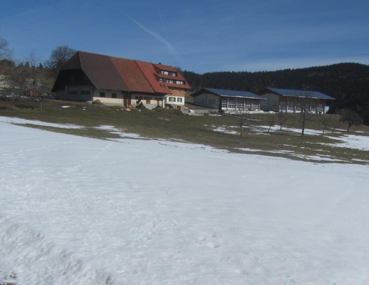 ehrsberg3waldmatt130316