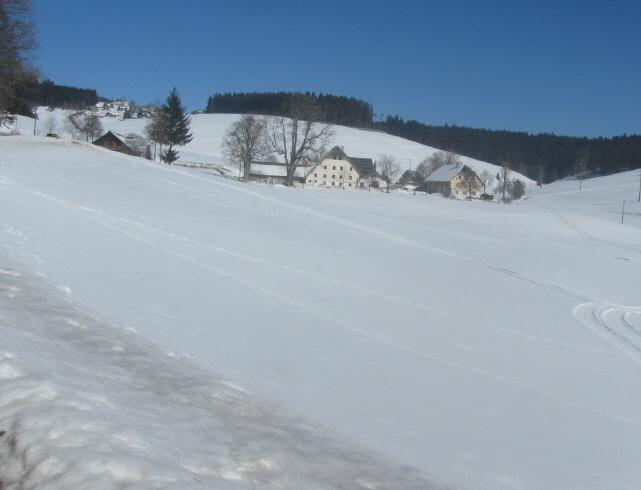 schwaerzenbach-ahohrnhaeuser130303