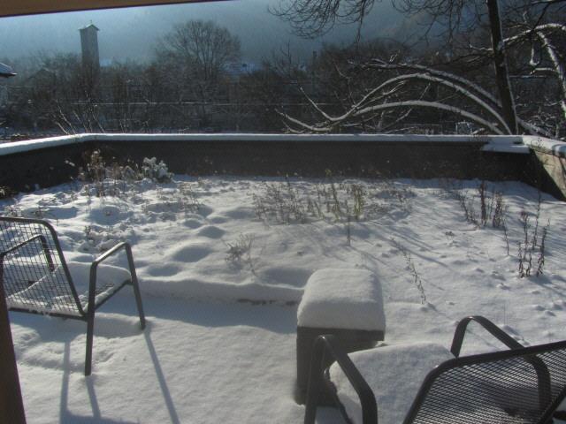schnee-dachgarten150101