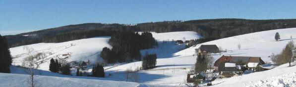 Blick nach Westen in die Neuwelt von der Platte aus zum Scherzingerhof, Baschijörgenhof, Hinterbauernhof und Brosihof  - oben am Waldrand führte der Urgraben-Kanal