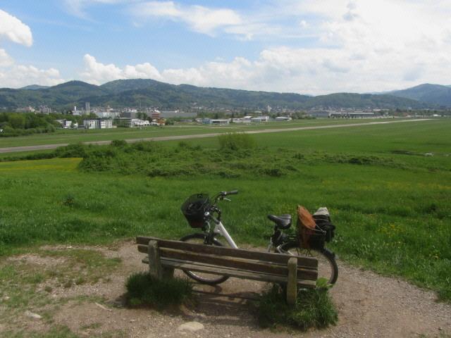 wolfsbuck13flugplatz-ost130507