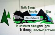 triberg1parkplatz150815
