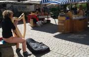 harfe-littenweiler170408