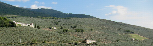 Umbria Italy - View from Trevi to south-east over olive-trees to Mte Serano (1426 m) - 4. Oct 2009
