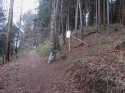 mtb2sternwald140117