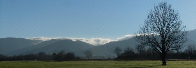 Blick früh morgens vom Dreisamtal nach Osten zu den Schwarzwaldhöhen mit Nebelschwaden am 16.1.2014