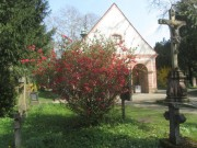 alterfriedhof1feuerbusch140327