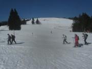 feldberg12schneeschuhwandern140313