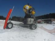 feldberg9seebuck-skikanone140313