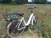 fahrrad1blumen2020juni17