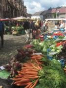 freiburg7muensterplatz-markt140816