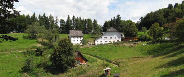 Blick nach Norden zum Häuslebauernhof oberhalb von Buchenbach-Wiesneck am 22.8.2014