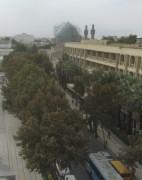 isfahan1strassenbaeume141017