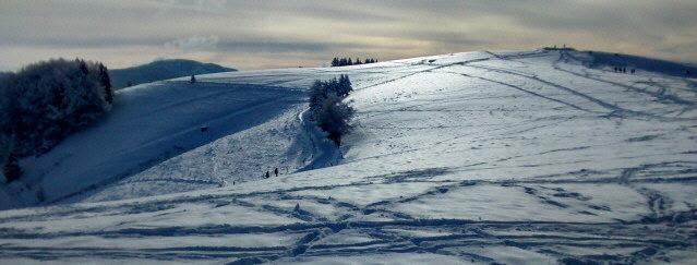 Auf dem 1250 m hohen Schauinsland im Schwarzwald bei Freiburg am 18.1.2015