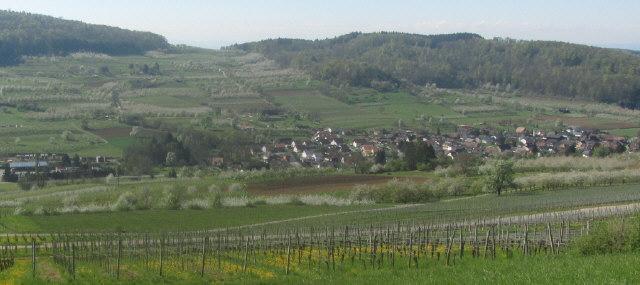 Blick nach Süden ins Eggenertal zu Niedereggenen am 19.4.2015