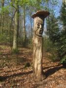 waldhaus15waldmenschen150412