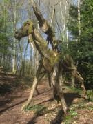 waldhaus16waldmenschen150412
