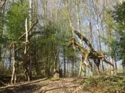 waldhaus24waldmenschen150412