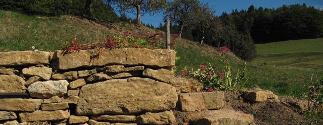 Natursteinmauer mit Treppe in Kirchzarten-Bickenreute am Nationalfeiertag 3.10.2015