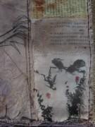 kraehe-china150905