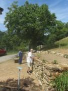 natursteinmauer1bickenreute150731