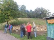 natursteinmauer5-150919