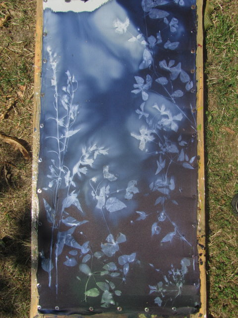 textilart2clematis150802