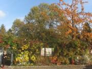 zwei-voegel2garten151030