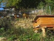 trockenmauer5garten-bienen151021