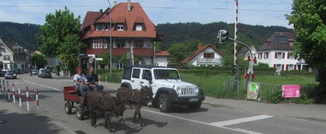 Esel-Gespann vom Kunzenhof am Höllentalbahnübergang in Freiburg-Littenweiler am 21.5.2016