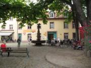 adelhaus160812