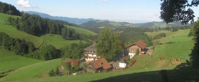 Kapphof zwischen St.Peter und St.Märgen im Schwarzwald am 11.8.2016 - Blick nach Westen auf St.Peter
