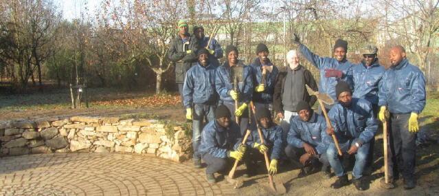15 Afrikaner aus Gambia und Nigeria bauen eine Trockenmauer in FR-Lehener Strasse mit Jochen Schmidt 1.12.2016
