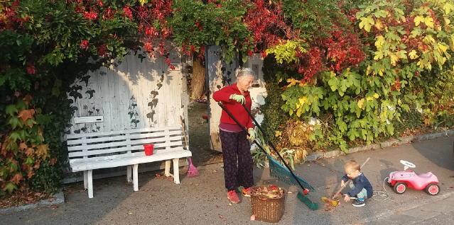 Herbstlaub im Oktober 2018 - Oma und Enkel bei der Arbeit