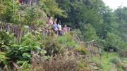 hizberggarten2bienengruppe201908