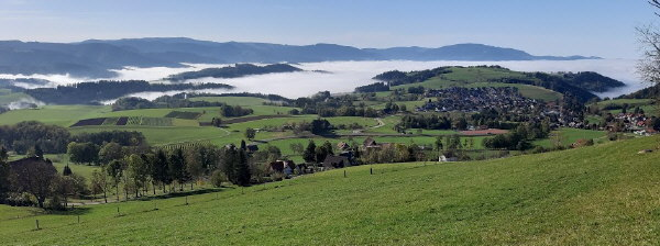 Blick von St.Peter im Hochschwarzwald (18 Grad) auf Freiburg im dichten Nebel (9 Grad) am 22.10.2019