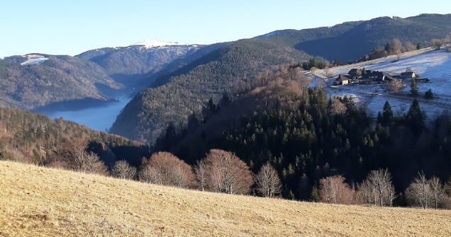 Blick vom Schauinsland übers neblige St.Wilhelmertal zum Feldberg am 24.1.2020