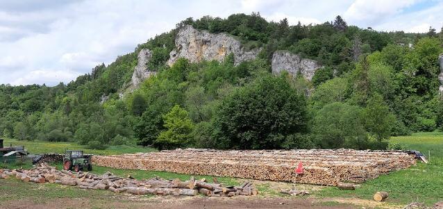 Donautal bei Beuron im Mai 2020 - Holzbeugen am Fluss