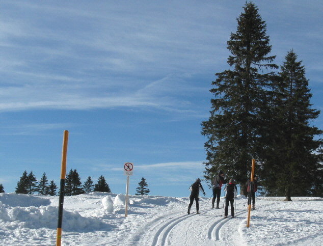 freiburg feldberg langlauf loipe skiwanderweg. Black Bedroom Furniture Sets. Home Design Ideas